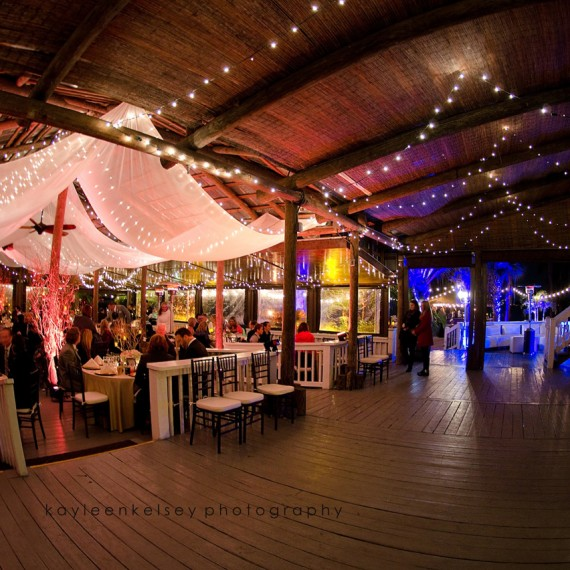 Soundwave Entertainment - Paradise Cove - Orlando Wedding DJs - LED Lighting Design - Orlando Wedding Venues