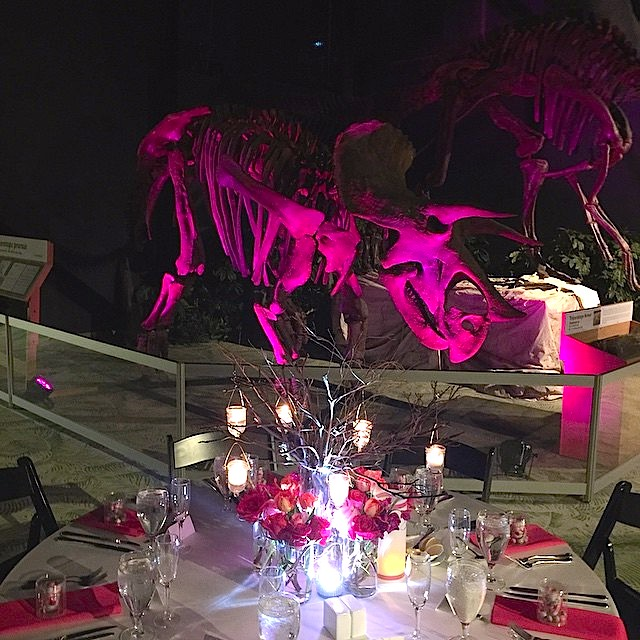soundwave-entertainment-orlando-science-center-2014-10-16-orlando-wedding-djs-led-lighting-design