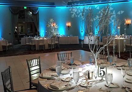 Soundwave Entertainement - Our Orlando Weddings - Rosen Shingle Creek - Orlando, FL