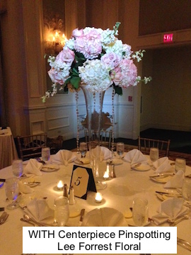 soundwave entertainment - wedding blog - loews portofino bay hotel - orlando, fl
